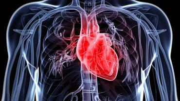 Zespół MAS to bardzo szczególna wada serca, która daje o sobie znać niezależnie od wieku pacjenta