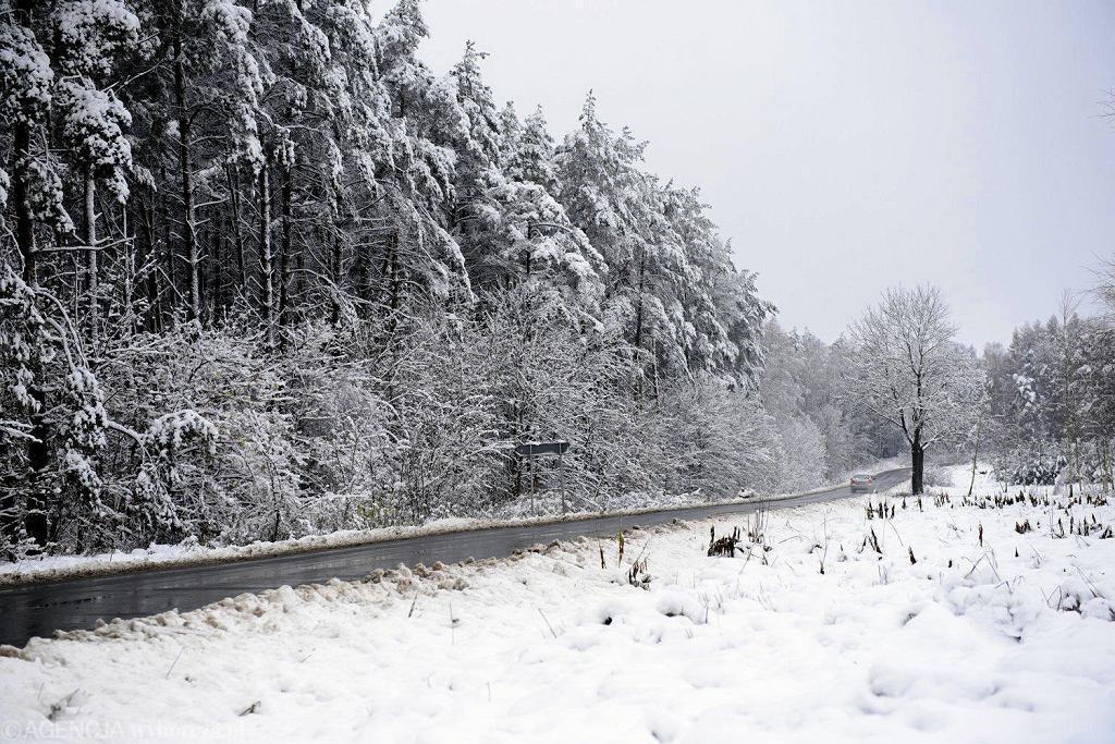 Zima w Olsztynie