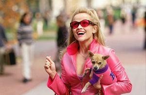"""Reese Witherspoon ponownie przywdzieje różowy strój i wcieli się w rolę Elle Woods w filmie """"Legalna blondynka 3""""."""
