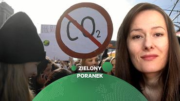 Izabela Zygmunt, Analityczka ds. energii i klimatu w WiseEuropa