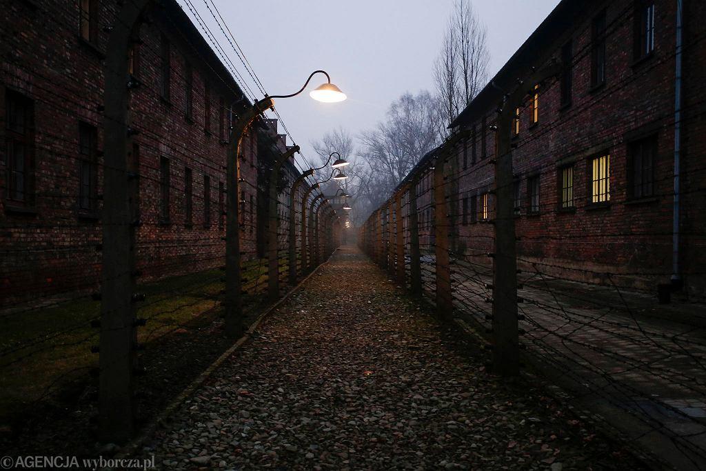 Obchody 73. rocznicy wyzwolenia byłego nazistowskiego obozu zagłady Auschwitz Birkenau