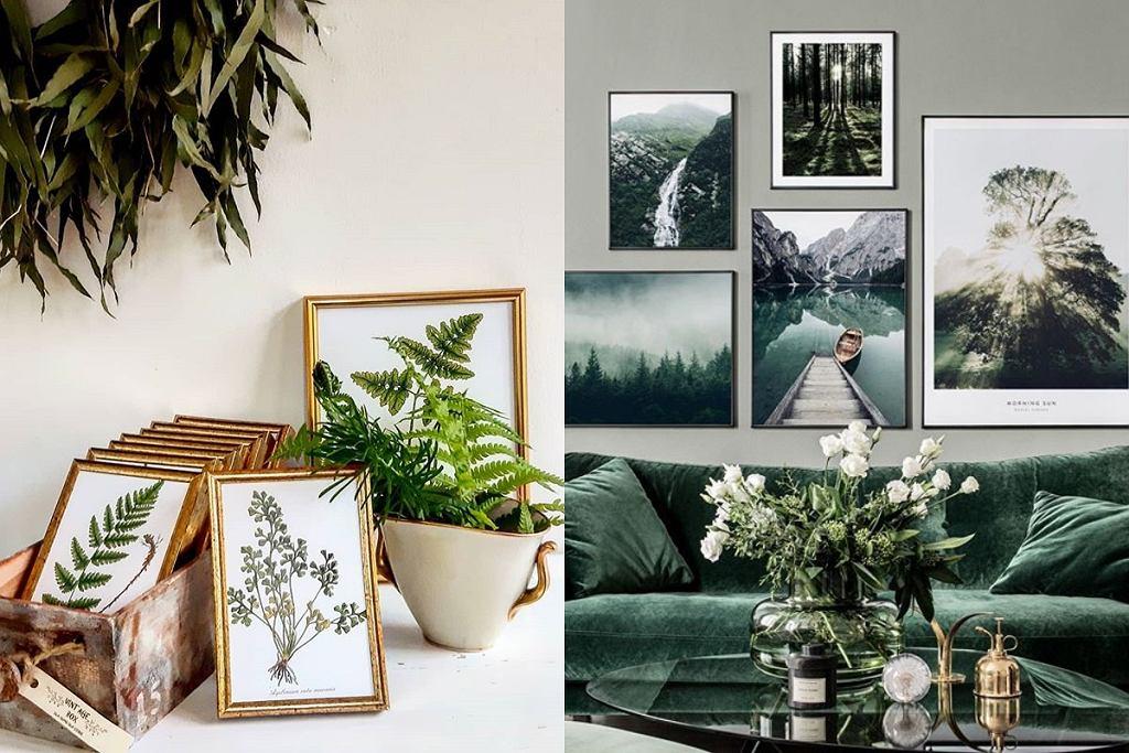 Plakaty botaniczne - trend 2020