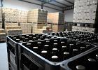 Polska kwarantanna bez alkoholu, a wódka przez internet niedostępna. Cała branża będzie w dużym kryzysie