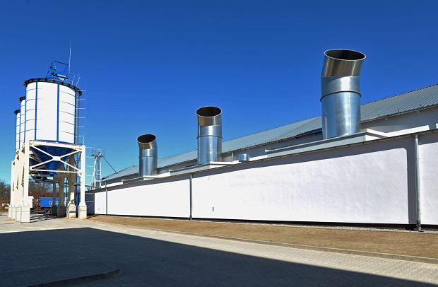 Bioenergy Farm Stanowice Sp. z o.o poszukuje współpracowników