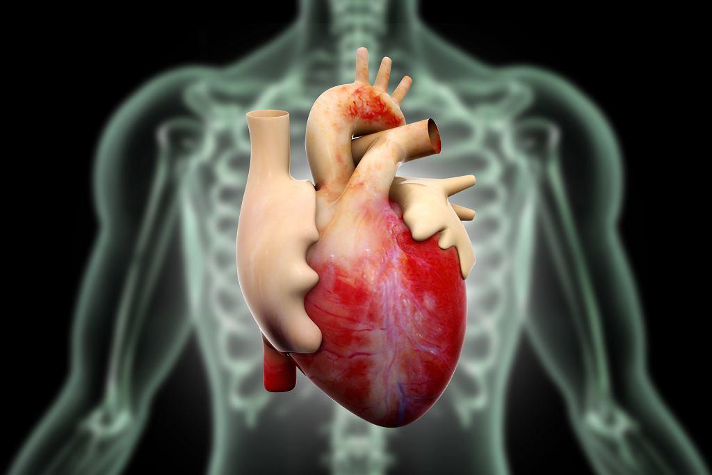 Ćwiczenia fizyczne poprawiają kondycję serca