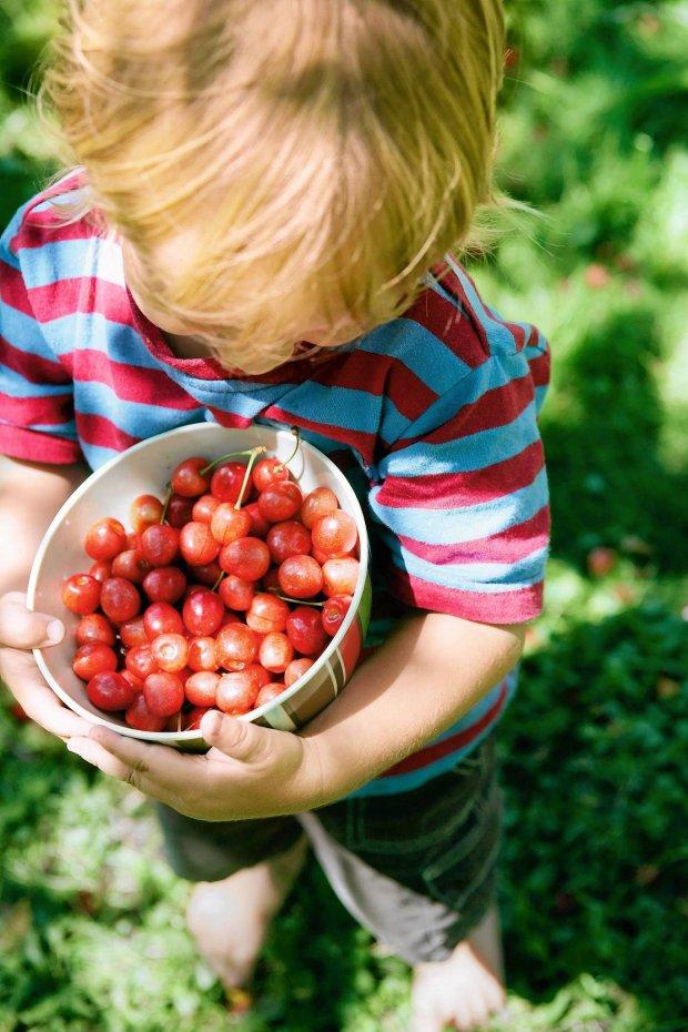 Ustaw program na zdrowie, czyli o żywieniu dzieci