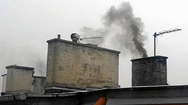 Smog w Poznaniu powstaje m.in. przez palenie w piecach niewłaściwymi materiałami