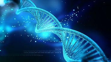 DNA (kwas dezoksyrybonukleinowy)