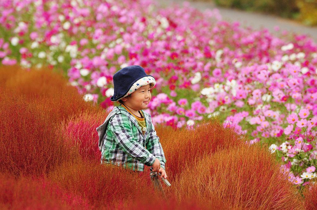 Czerwona plaża, otwór w ziemi, gdzie stale pali się ogień, jaskinia 12-metrowych kryształów - wiesz o jakich miejscach mowa? Są niesamowite, dziwne i wprawią Cię w zachwyt. // Kwiatowy park Hitachi - Japonia. Pola tulipanów w Holandii pewnie wielu z Was już miało okazję zobaczyć. Równie piękny, jak nie piękniejszy, tonący w kwiatach na powierzchni 190 hektarów ogród można podziwiać we wschodniej części wyspy Honsiu. Co roku o różnych porach, od wiosny do jesieni, kwitnie tu kilka milionów roślin, tworzących zjawiskowe dywany m.in. żonkile i tulipany