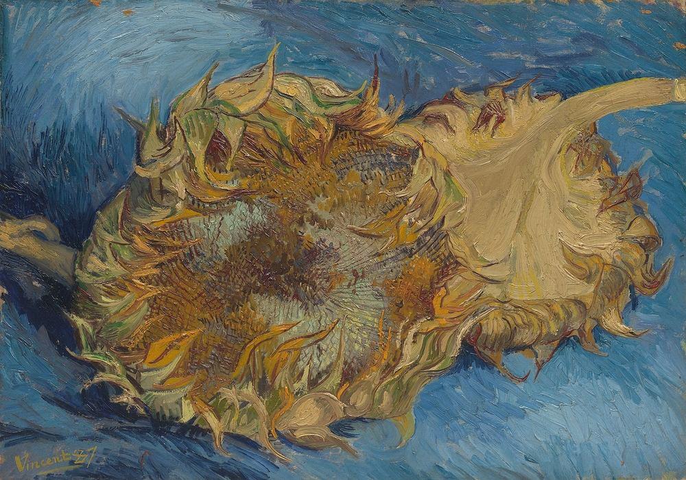 'Słoneczniki' Vincent van Gogh. Zdjęcie ilustracyjne
