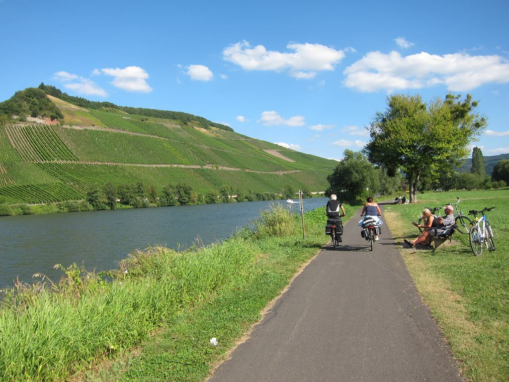 Droga rowerowa nad Mozelą w Niemczech