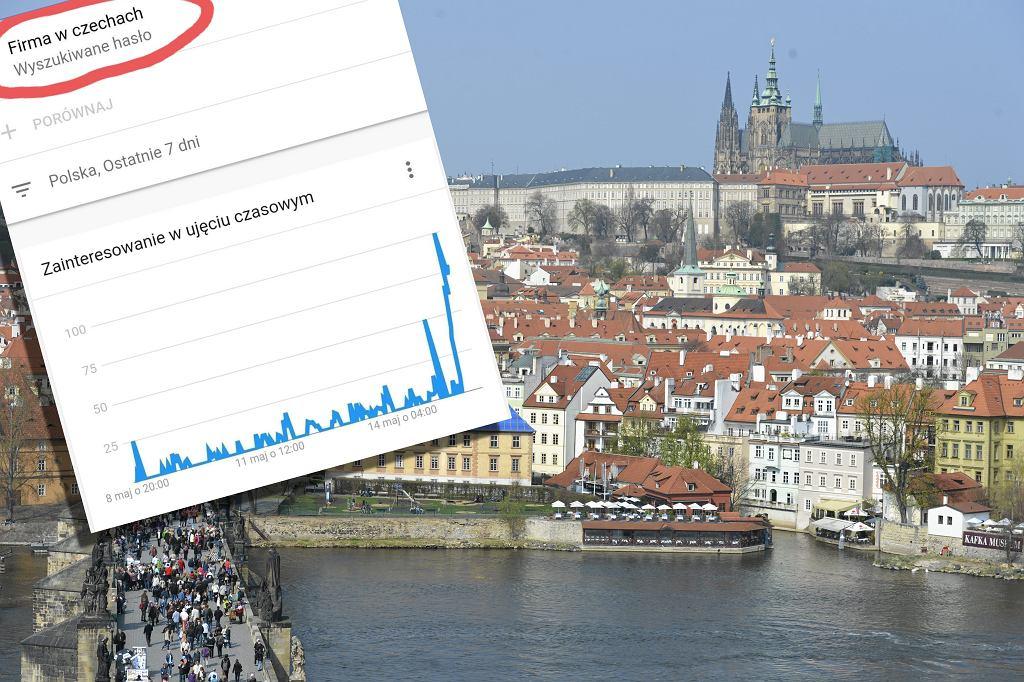 Firma w Czechach szukana w Google