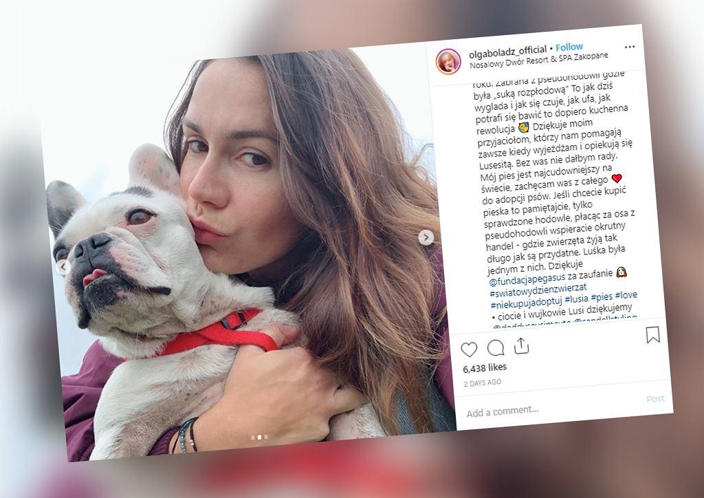 Olga Bołądź adoptowała psa z pseudohodowli. Pokazała zatrważające zdjęcia