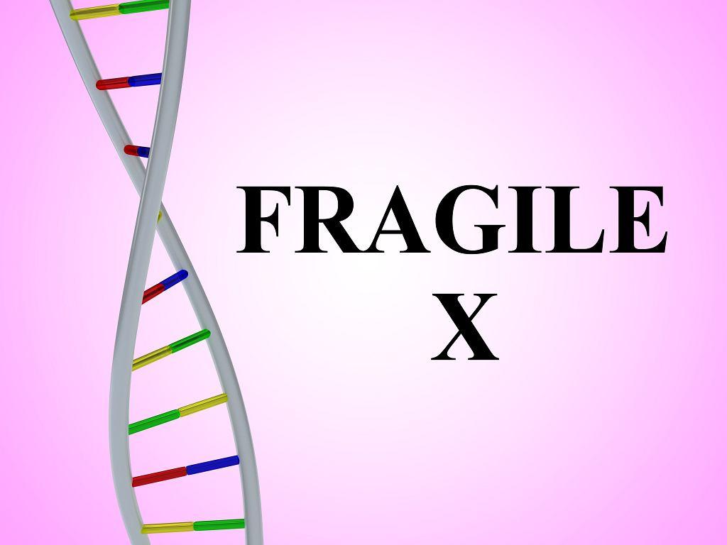 Zespół łamliwego chromosomu X daje często objawy typowe dla klasycznego autyzmu i bywa z nim mylony