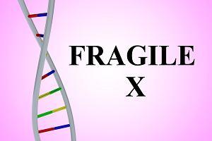 FraX - najczęstsza genetyczna przyczyna niepełnosprawności intelektualnej u chłopców, a powszechnie nieznana i często nierozpoznawana