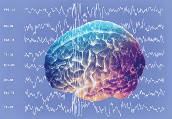 fale w mózgu