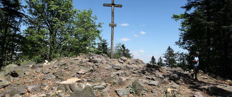 Turyści nie zdobywali najwyższego szczytu Gór Świętokrzyskich? Pomiary były błędne, wyższy jest inny wierzchołek