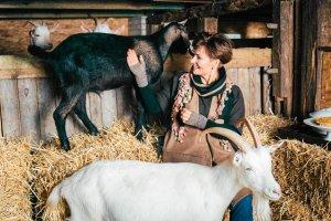 Hodować po ludzku: Tanie mięso nie służy zwierzętom, nie służy też ludziom. Służy firmom, które je produkują