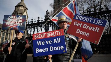 Demonstracja przeciwników brexitu przed Pałacem Westminsterskim