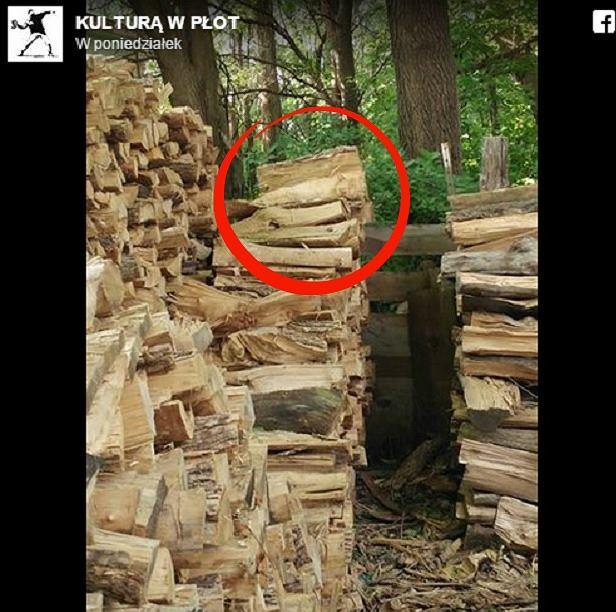 fot.Facebook/Kulturą w płot