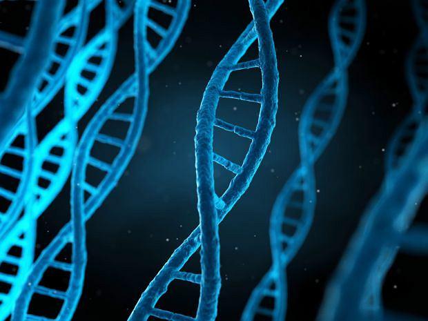Rozwój choroby Kennedy'ego spowodowany jest uszkodzeniem chromosomu X