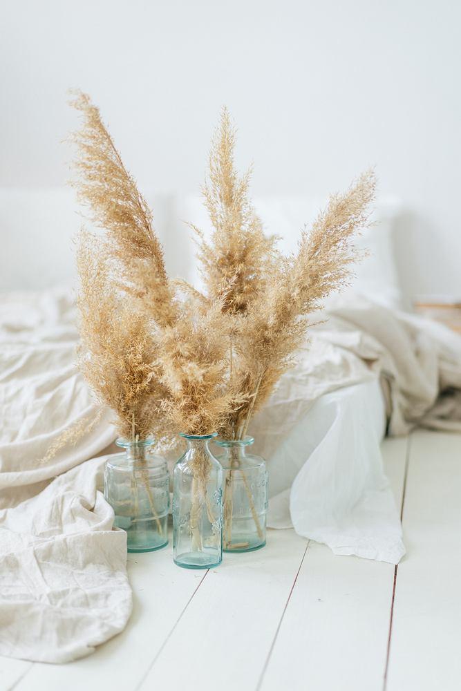 Sztuczna trawa pampasowa- gotowe pomysły na aranżację. Zdjęcie ilustracyjne