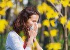 Alergia. Katar przychodzi na wiosnę? Po czym poznać, że to nie przeziębienie