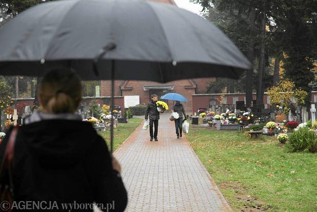 Zdjęcie numer 11 w galerii - Wszystkich Świętych we Wrocławiu. Cmentarze w kwiatach [ZDJĘCIA]