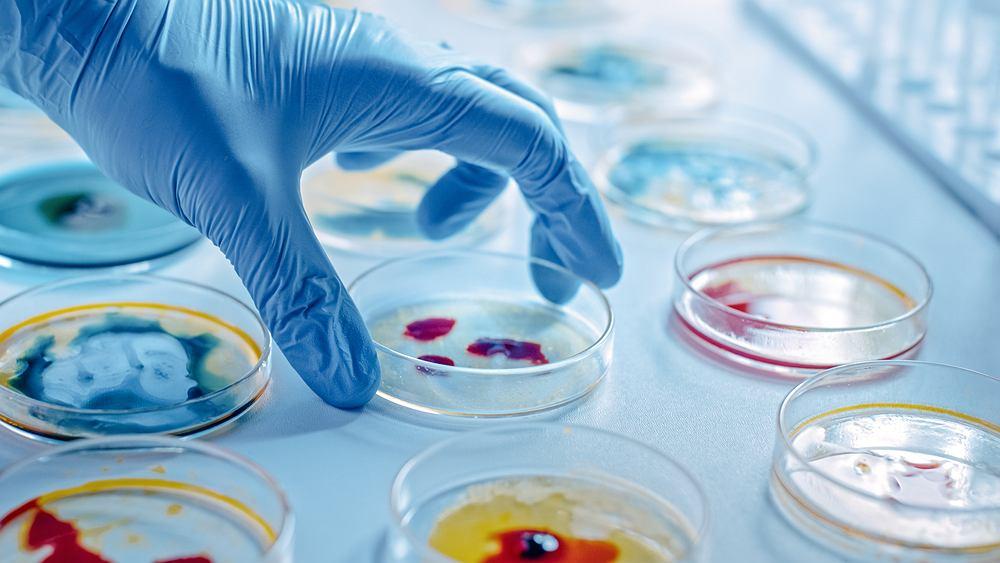 Drobnoustroje jelitowe mają wpływ na tworze nienowych komórek nerwowych w dorosłym mózgu. To wielka nadzieja na leczenie np. utraty pamięci