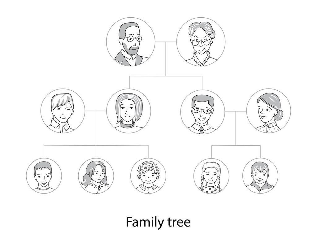 Jak narysować drzewo genealogiczne?