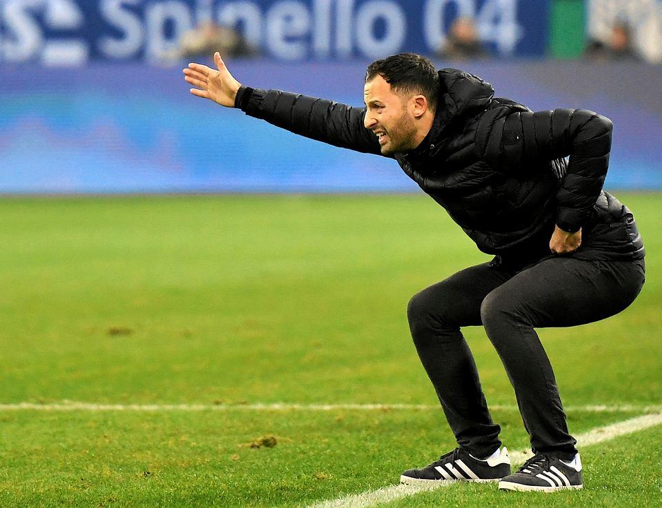 Domenico Tedesco, trener Schalke