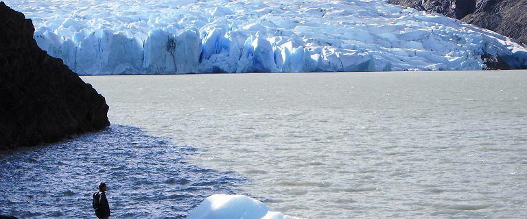 Chile. Dwie góry lodowe oderwały się od lodowca Grey w Patagonii