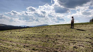 Władysław Zowada na polu dotkniętym suszą