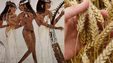 Jak wyglądał test ciążowy w starożytnym Egipcie?