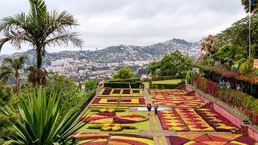 Ogród w Funchal na Maderze