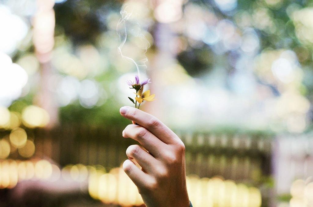 Każdy z nas ma swój ulubiony zapach.
