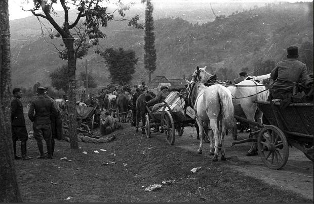 Kolumna wojskowych furmanek w drodze do granicy polsko-rumuńskiej