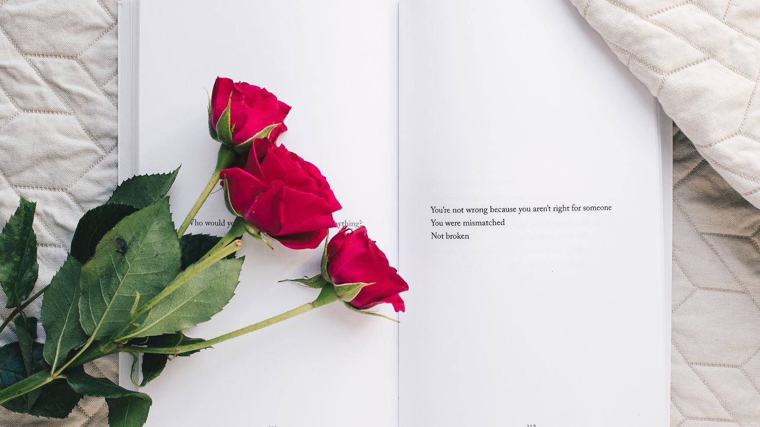 Walentynki 2019 Jakie Kwiaty Kupic Znaczenie Kwiatow I Ich Kolorow
