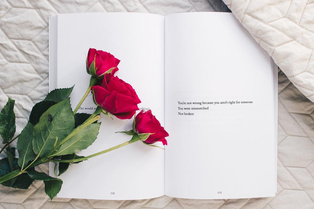 Walentynki 2019 Jakie Kwiaty Kupić Znaczenie Kwiatów I Ich Kolorów