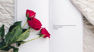 Walentynki 2019. Jakie kwiaty kupić? Znaczenie kwiatów i ich kolorów