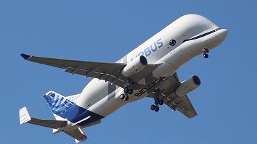 Najsłodszy samolot świata rozpoczyna loty