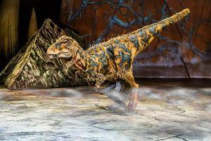 Prehistoryczne krokodyle żywiły się dinozaurami!
