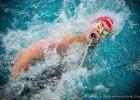 Poznań International Swimming Cup. Mistrzowie Polski popłyną na Termach Maltańskich