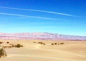 Zdjęcie numer 4 w galerii - Niezwykła anomalia: zakwitła Dolina Śmierci!