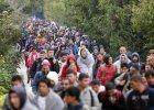 Szefowie niemieckich koncernów: tak dla uchodźców