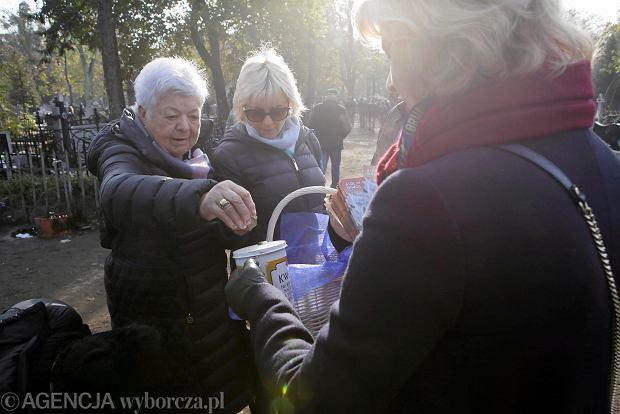 Zdjęcie numer 54 w galerii - Rekordowa kwesta. Na cmentarzu św. Jerzego w Toruniu udało się zebrać 23,5 tys. zł