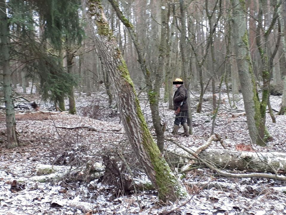 Przerwane polowanie