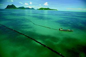 Wyspy Penang i Langkawi w Malezji. Tam, gdzie kolory zawstydzają artystów