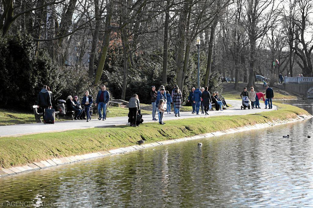 Spacerowicze w kieleckim parku