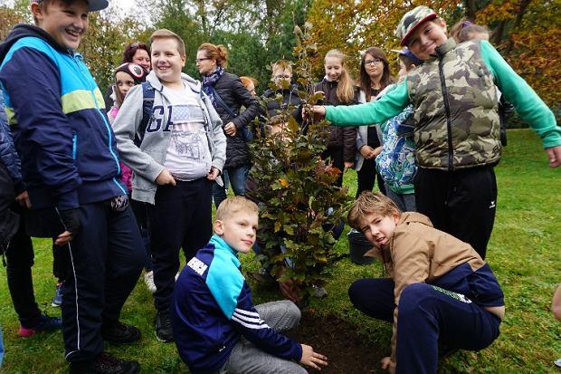 Zdjęcie numer 0 w galerii - Dzięki temu wydarzeniu posadzono już ponad 800 tys. drzew. Inauguracja 15. edycji Święta Drzewa [ZDJĘCIA]